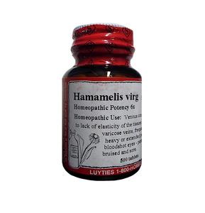 Hamamelis Virg