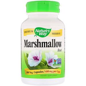 Marshmallow Root N.W
