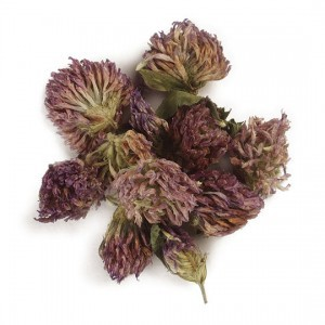 Red Clover Tops 1 ounce