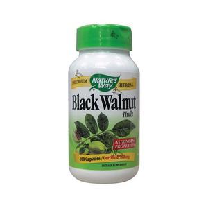 Black Walnut N.W